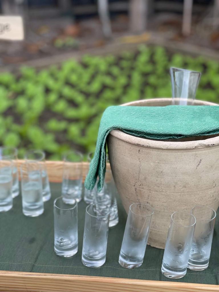 Tasting at Shades of Green