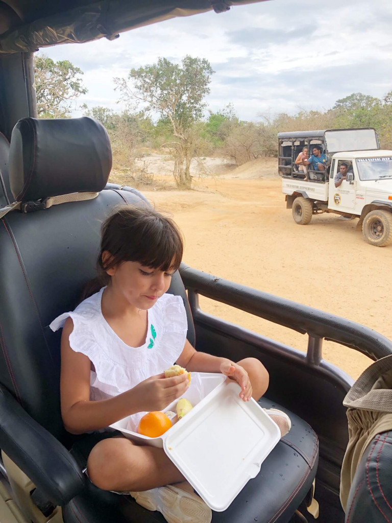 Snacks on safari