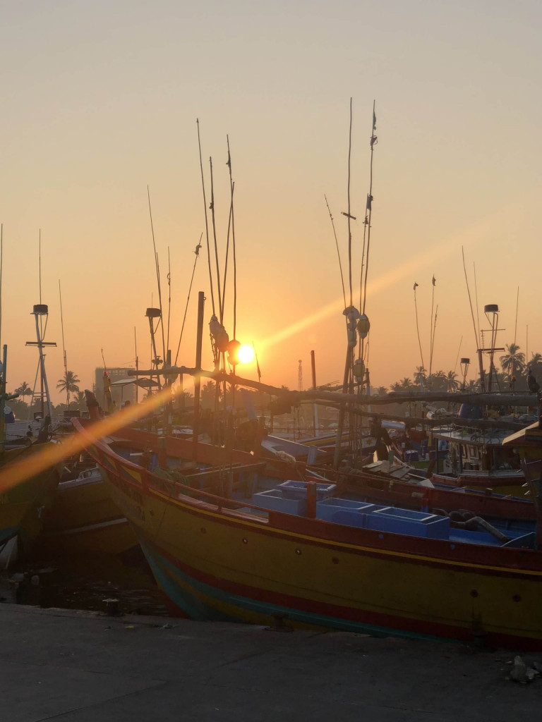 Sunrise in the harbour