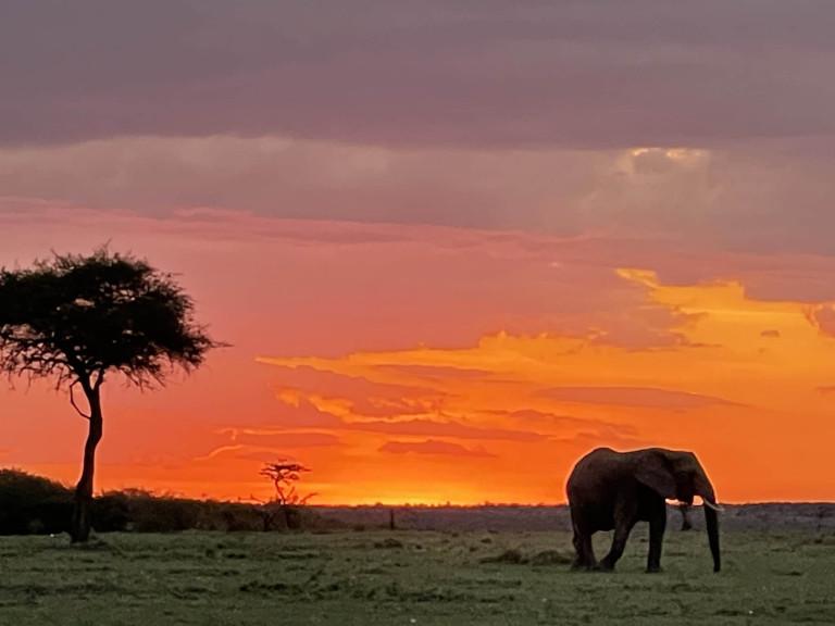 Masai Mara Sun set
