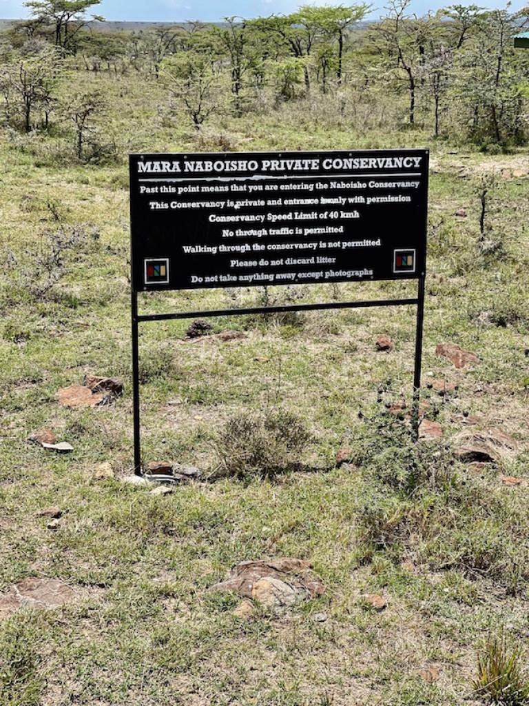 Mara Naboisho Conservancy - Mara Nyika