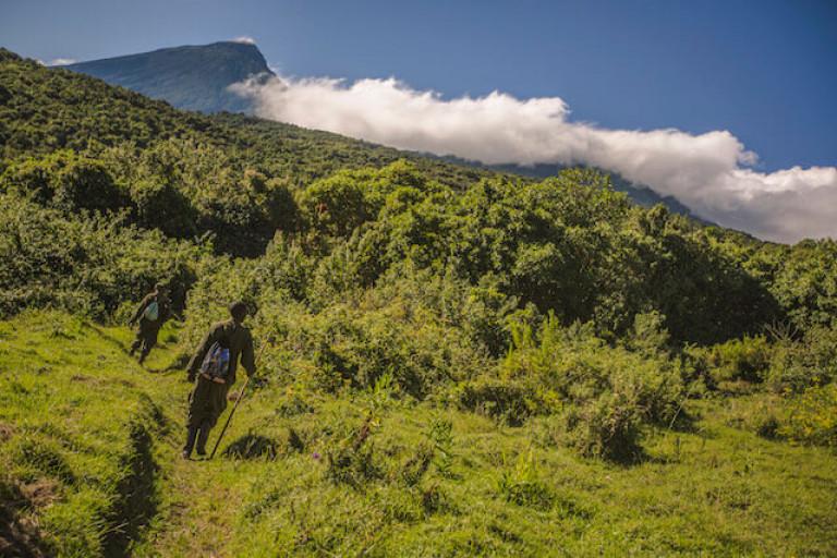 Uganda Trek
