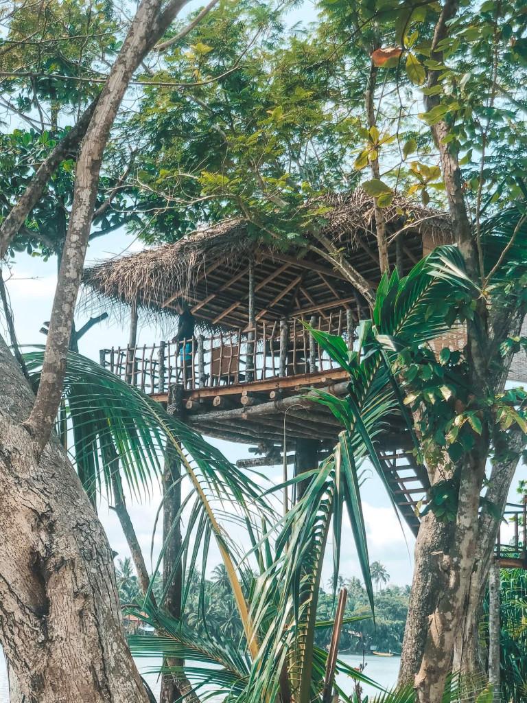 Tree House playtime