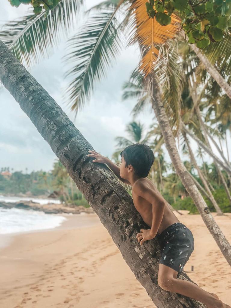 Rio AKA Mowgli