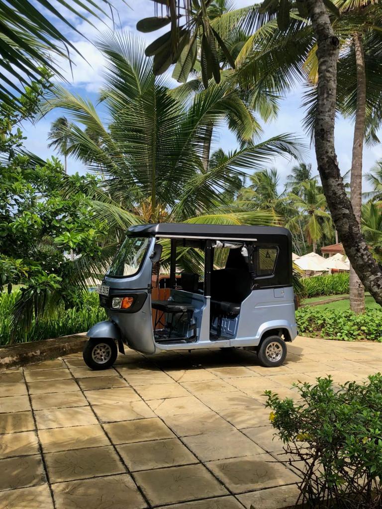 Resort transport