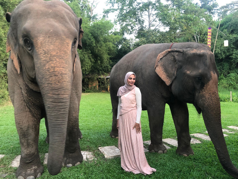 Sukaina with the elephants