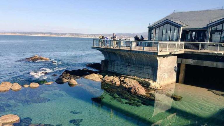 Monterery Aquarium