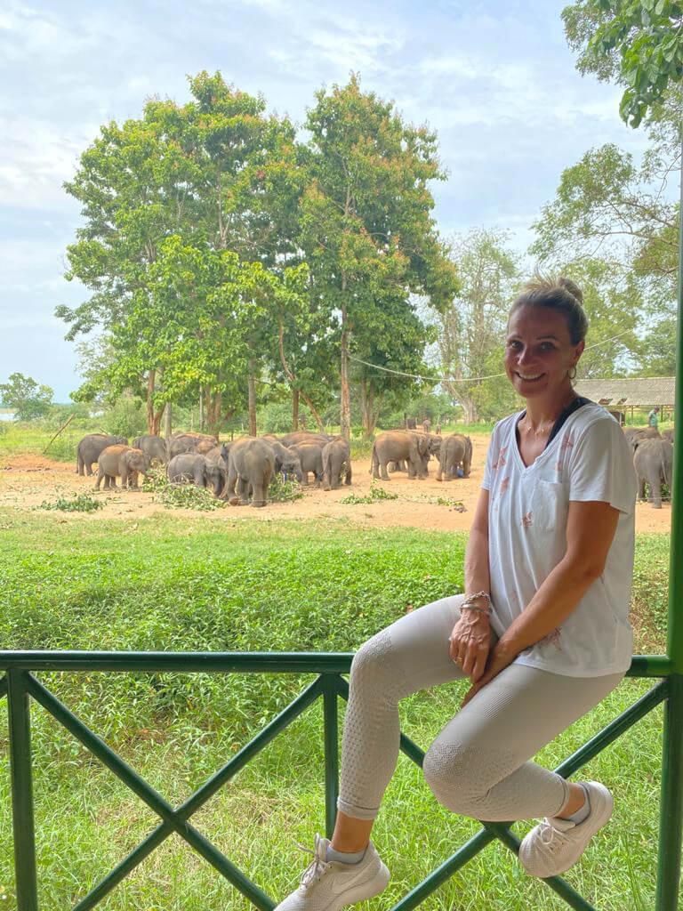Elephant Sanctuary Sri Lanka