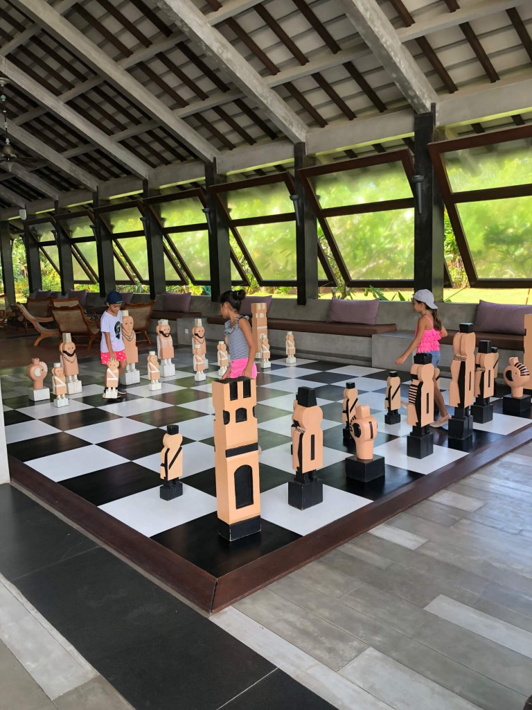 Game of chess anyone?